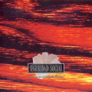 SeguridadSocial-QueNoExtingaLlama