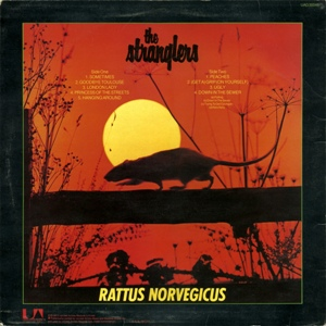 stranglers-rattusnorvegicus-3