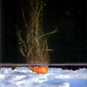 themarsvolta-deloused-2